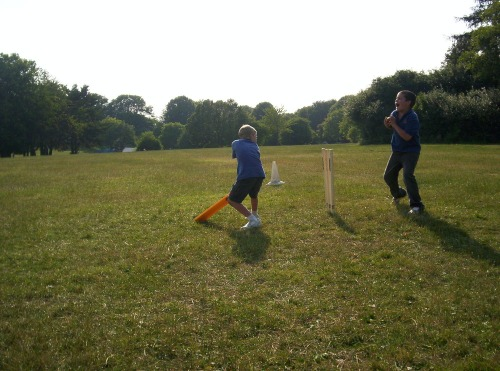 Cricket_4